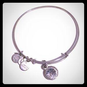Jewelry - Alex & Ani Bracelet